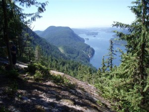 View 157, Dilly Dally trail