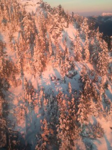 Subjects on Eagle Ridge at sunset