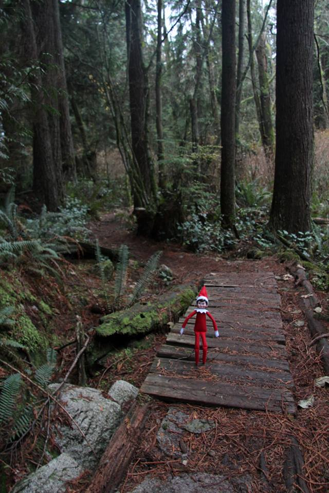 Elves always stick to the main trail and never take shortcuts. By staying on the trail, you are less likely to get lost, are easier to find and gentler on the environment. #SARelf