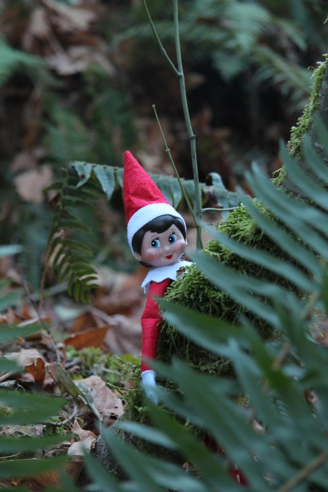 All elves should know what to do if they find themselves lost in the woods. Does your little elf know how to hug-a-tree? #SARelf