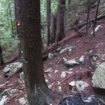 Where previous lost hikers lit a fire on the trail.