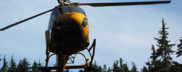 Diez Vistas and Eagle Ridge Rescues