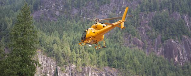 DeBeck Creek 2011 Search Report